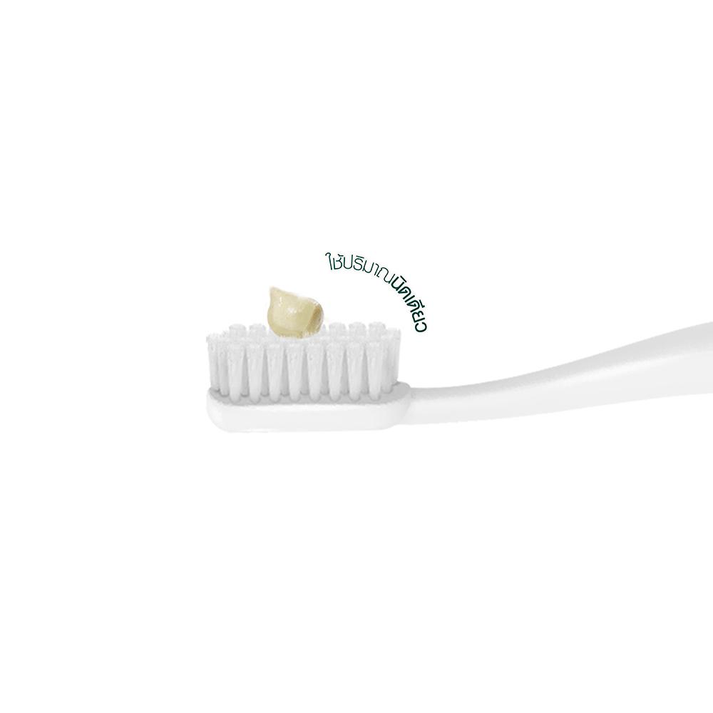 P-Aromdee-Toothpaste-03